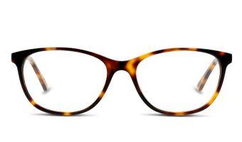 8719154308536-front-01-d-by-d--dbhf05-eyewear-havana-gold-copy