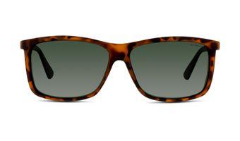 762753199379-front-01-Polaroid-p8346-eyewear-havana-copy